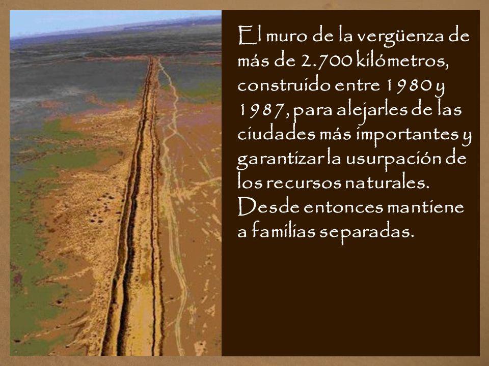 El muro de la vergüenza de más de 2.700 kilómetros, construido entre 1980 y 1987, para alejarles de las ciudades más importantes y garantizar la usurpación de los recursos naturales.