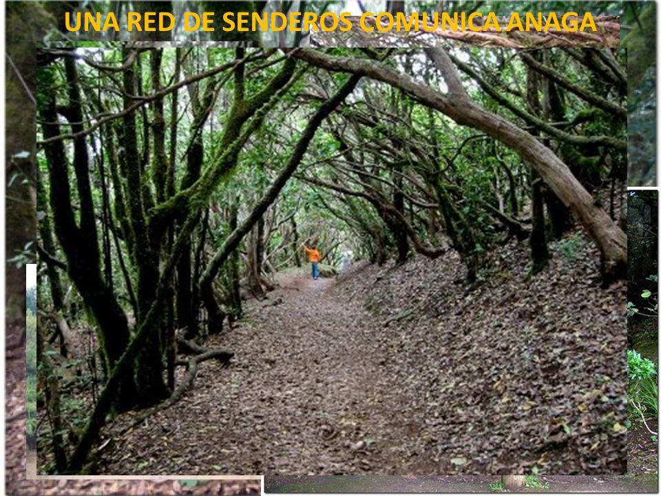 UNA RED DE SENDEROS COMUNICA ANAGA