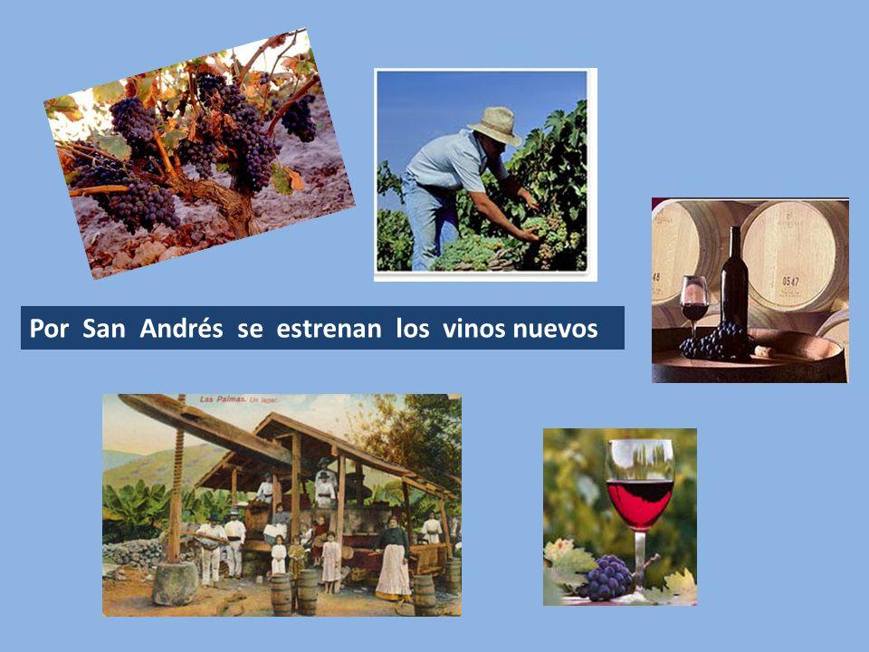 Por San Andrés se estrenan los vinos nuevos