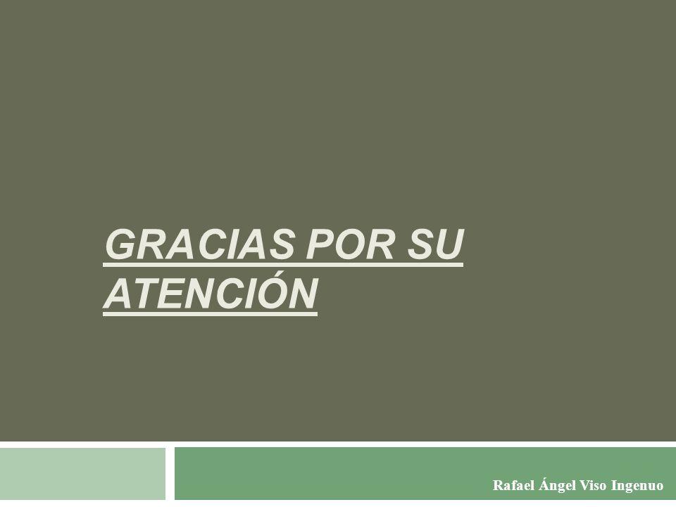 GRACIAS POR SU ATENCIÓN Rafael Ángel Viso Ingenuo