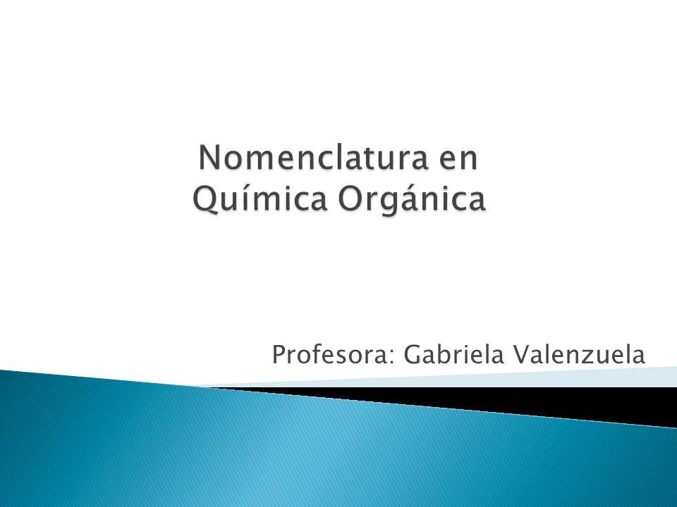 Profesora: Gabriela Valenzuela