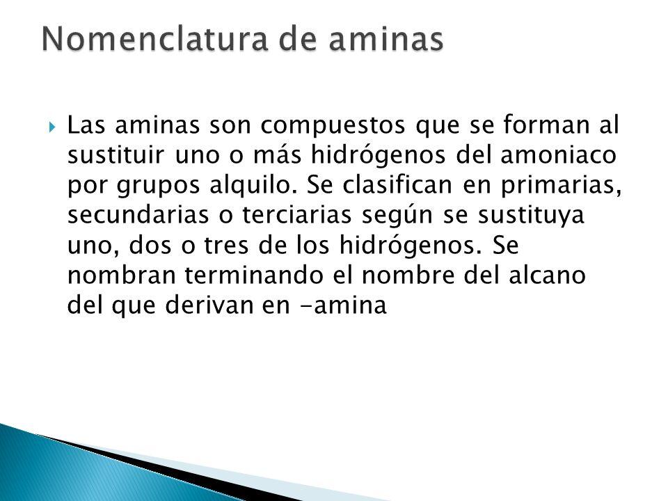 Las aminas son compuestos que se forman al sustituir uno o más hidrógenos del amoniaco por grupos alquilo. Se clasifican en primarias, secundarias o t