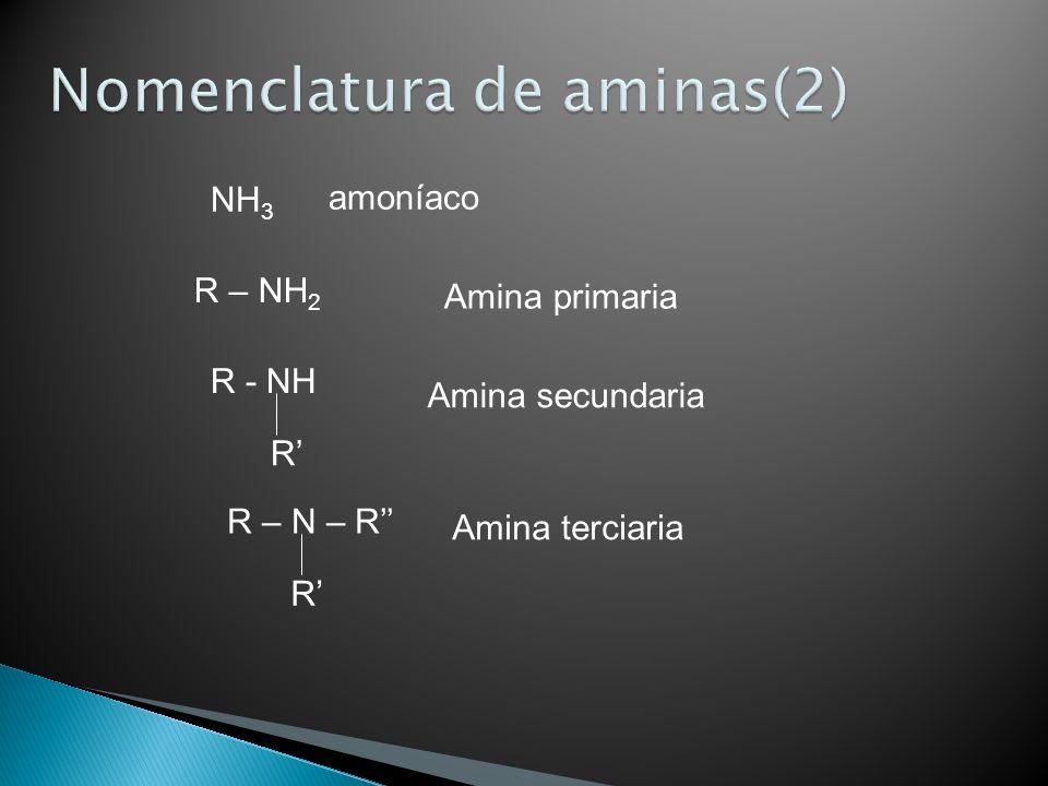 R – NH 2 Amina primaria NH 3 amoníaco R - NH R Amina secundaria R – N – R R Amina terciaria