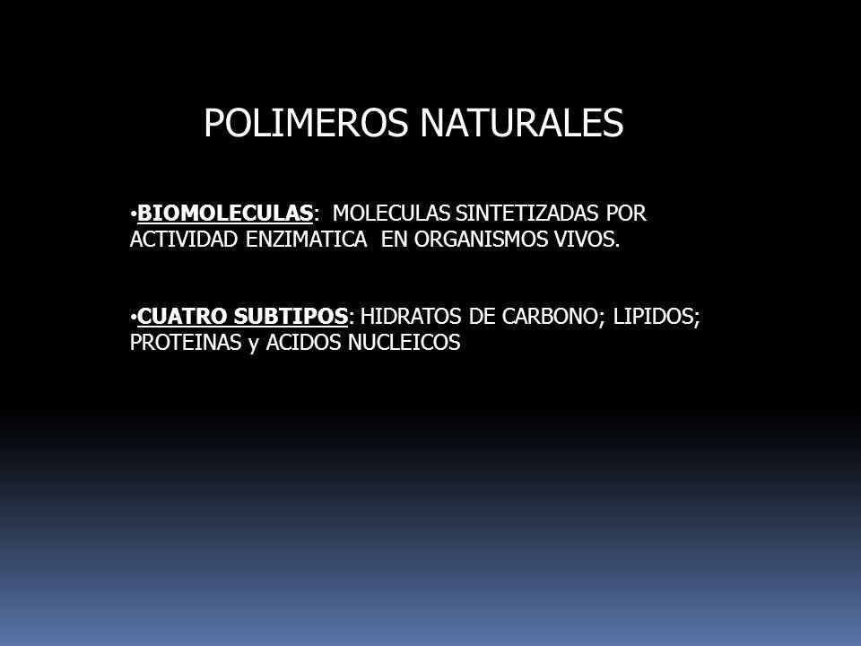 POLIMEROS NATURALES BIOMOLECULAS: MOLECULAS SINTETIZADAS POR ACTIVIDAD ENZIMATICA EN ORGANISMOS VIVOS. CUATRO SUBTIPOS: HIDRATOS DE CARBONO; LIPIDOS;