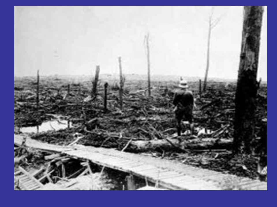 1918 : TERMINO DEL CONFLICTO Alemania lanza la ultima ofensiva, para forzar un tratado de Paz, pero fracasa por la superioridad numérica de los Norteamericanos.