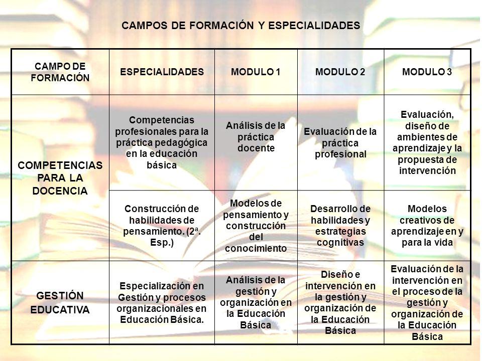 CAMPO DE FORMACIÓN ESPECIALIDADESMODULO 1MODULO 2MODULO 3 COMPETENCIAS PARA LA DOCENCIA Competencias profesionales para la práctica pedagógica en la e