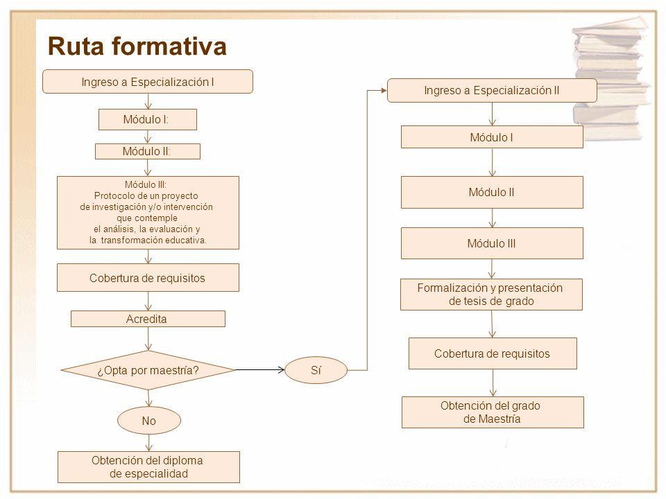 Ruta formativa Ingreso a Especialización I Módulo I: Módulo II: Módulo III: Protocolo de un proyecto de investigación y/o intervención que contemple e