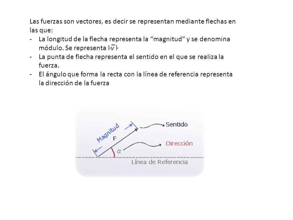 Las fuerzas son vectores, es decir se representan mediante flechas en las que: -La longitud de la flecha representa la magnitud y se denomina módulo.
