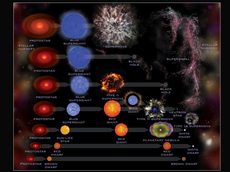 EVOLUCION DE UNA ESTRELLA optativo La evolución de una estrella depende de su masa: Estrellas con masa entre 0,8 y 11 masas solares gigante roja-enana