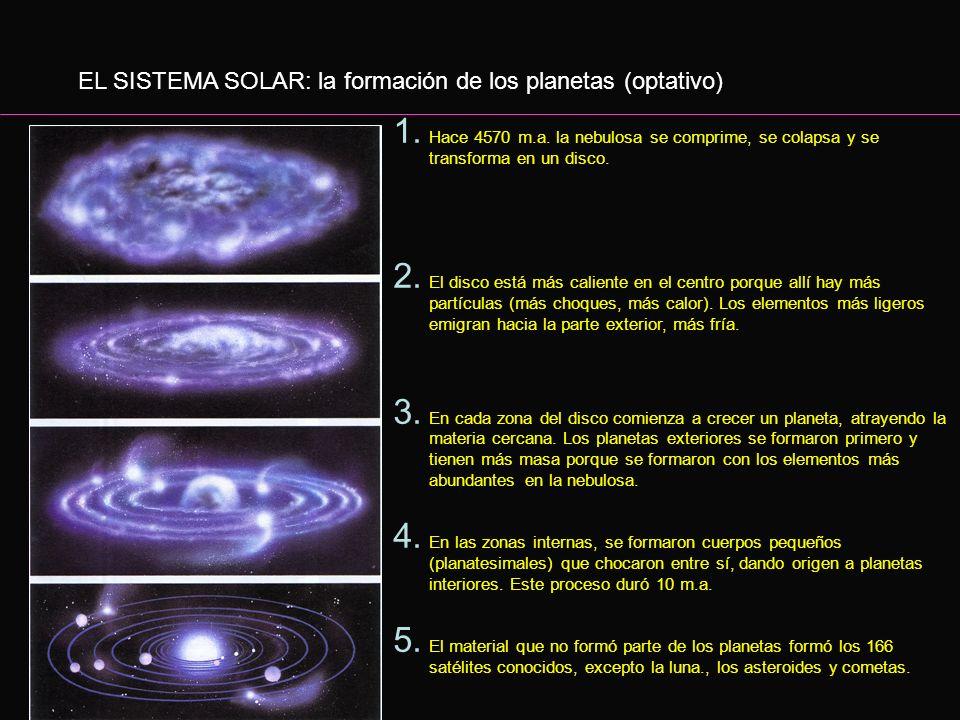 EL SISTEMA SOLAR: el origen del sol (optativo) 1. Explota una supernova 2. La explosión de la supernova genera una onda de choque. 3. La onda de choqu