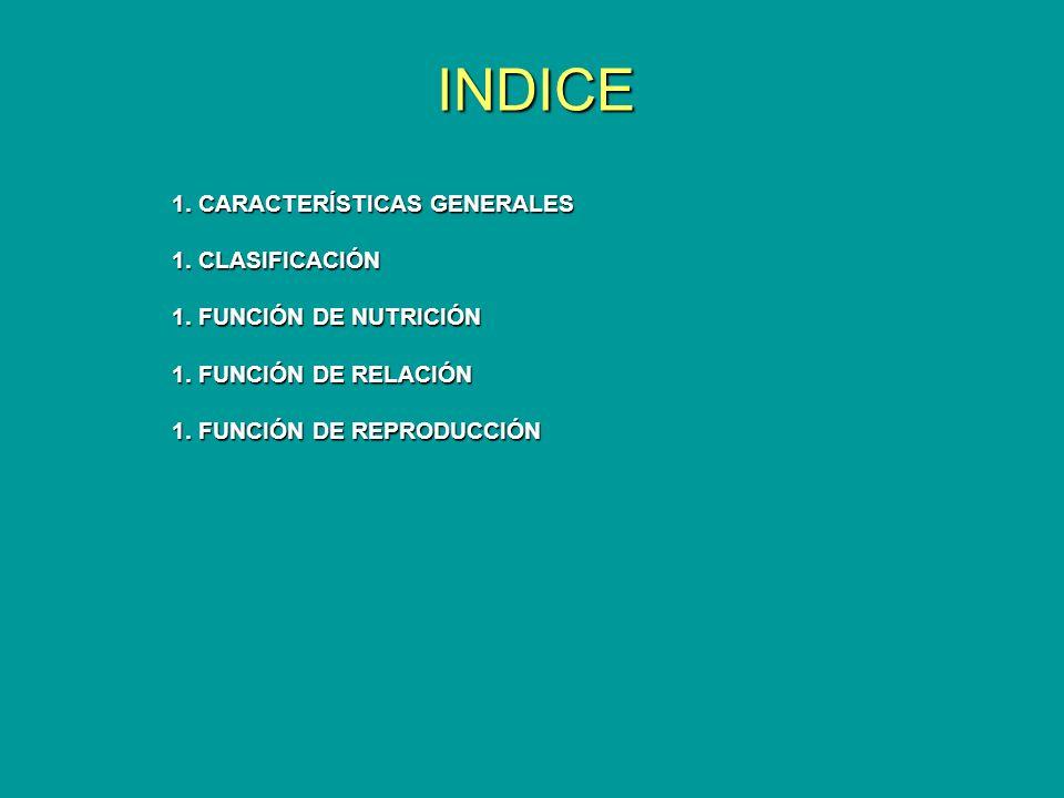 INDICE 1. CARACTERÍSTICAS GENERALES 1. CLASIFICACIÓN 1. FUNCIÓN DE NUTRICIÓN 1. FUNCIÓN DE RELACIÓN 1. FUNCIÓN DE REPRODUCCIÓN