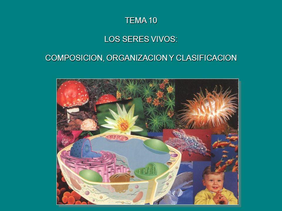 TEMA 10 LOS SERES VIVOS: COMPOSICION, ORGANIZACION Y CLASIFICACION