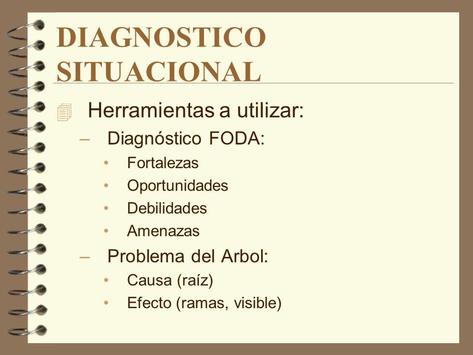 DIAGNOSTICO SITUACIONAL 4 Análisis de la empresa: –Historia –Posición en el mercado. –Cartera de productos. –Diagnóstico organizacional –Evaluación de