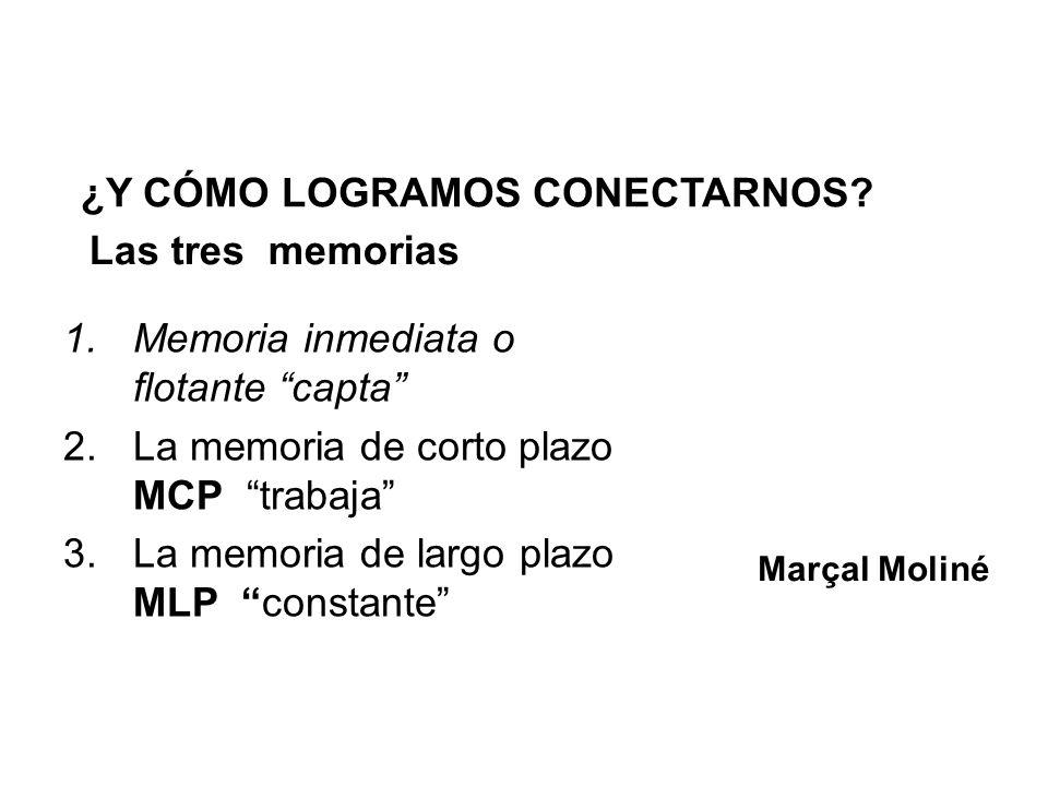 Las tres memorias 1.Memoria inmediata o flotante capta 2.La memoria de corto plazo MCP trabaja 3.La memoria de largo plazo MLP constante Marçal Moliné