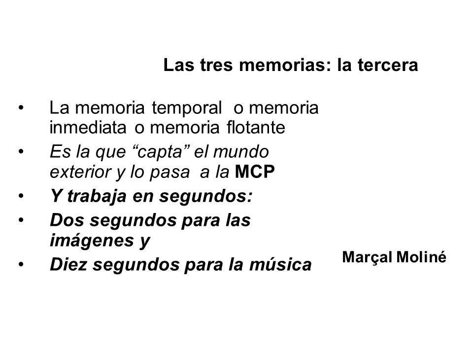 La memoria temporal o memoria inmediata o memoria flotante Es la que capta el mundo exterior y lo pasa a la MCP Y trabaja en segundos: Dos segundos pa