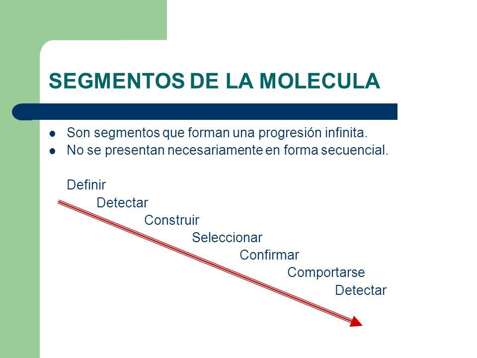 SEGMENTOS DE LA MOLECULA Son segmentos que forman una progresión infinita. No se presentan necesariamente en forma secuencial. Definir Detectar Constr