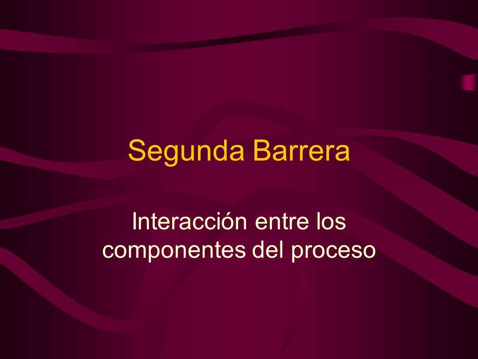 Segunda Barrera Interacción entre los componentes del proceso