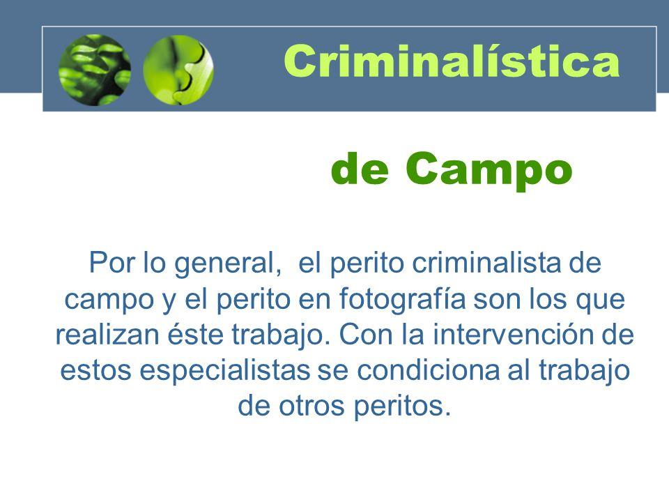 Criminalística de Campo Por lo general, el perito criminalista de campo y el perito en fotografía son los que realizan éste trabajo. Con la intervenci