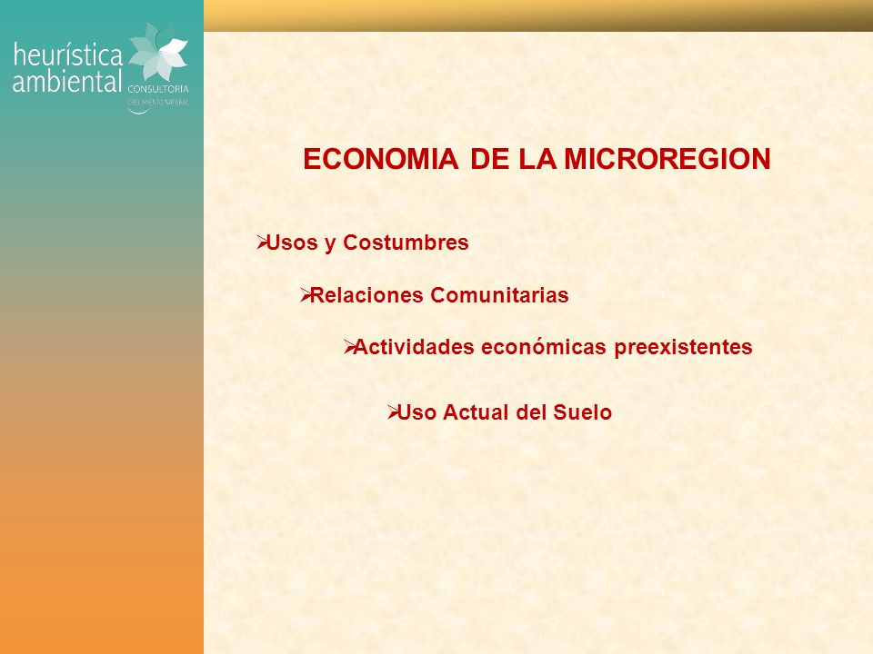 ECONOMIA DE LA MICROREGION Usos y Costumbres Relaciones Comunitarias Actividades económicas preexistentes Uso Actual del Suelo