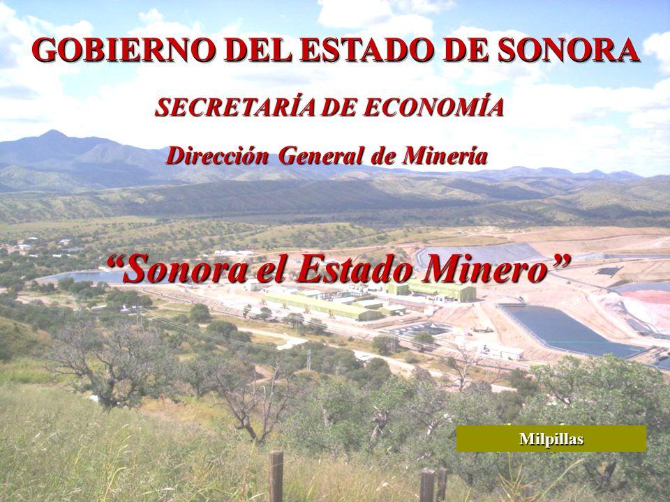 direccion general de economia: