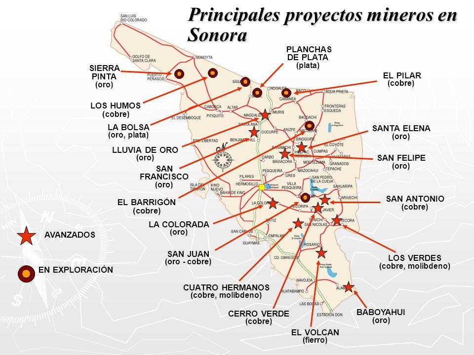 Principales proyectos mineros en Sonora SIERRA PINTA (oro) LOS HUMOS ( cobre) EL BARRIGÓN (cobre) CERRO VERDE (cobre) SAN JUAN (oro - cobre) LA BOLSA