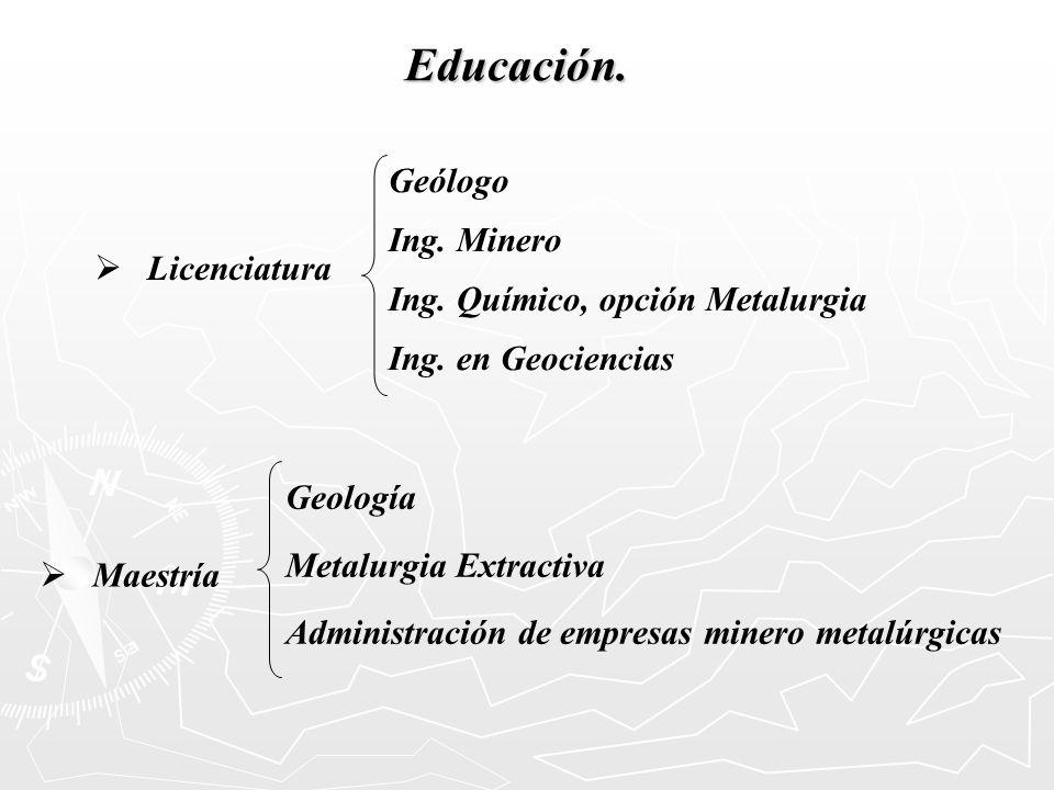 Licenciatura Educación. Geólogo Ing. Minero Ing. Químico, opción Metalurgia Ing. en Geociencias Maestría Geología Metalurgia Extractiva Administración