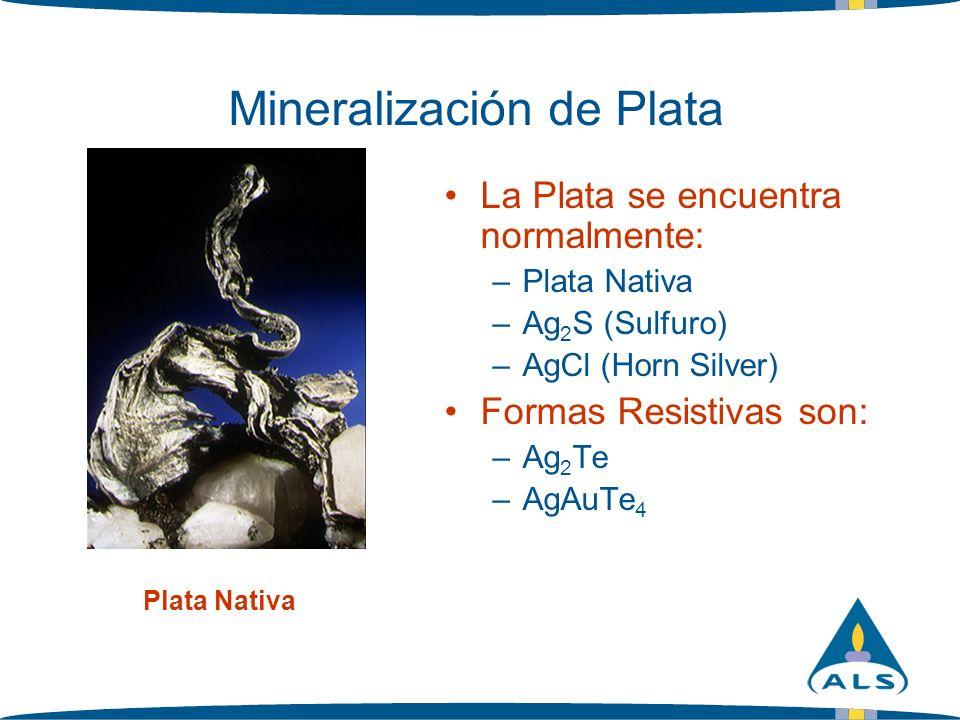 Mineralización de Plata La Plata se encuentra normalmente: –Plata Nativa –Ag 2 S (Sulfuro) –AgCl (Horn Silver) Formas Resistivas son: –Ag 2 Te –AgAuTe