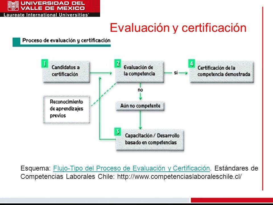 Evaluación y certificación Esquema: Flujo-Tipo del Proceso de Evaluación y Certificación. Estándares deFlujo-Tipo del Proceso de Evaluación y Certific