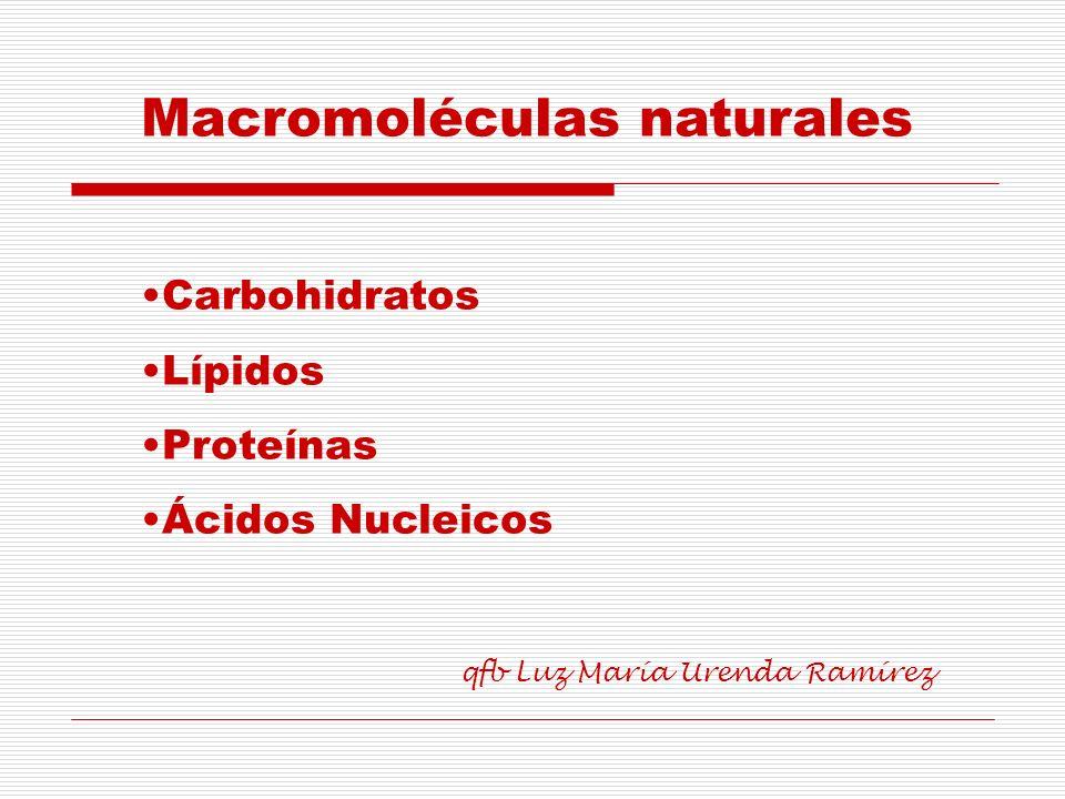 Son biomoléculas de elevado peso molecular, formados por otras subunidades estructurales o monómeros, denominados nucleótidos.