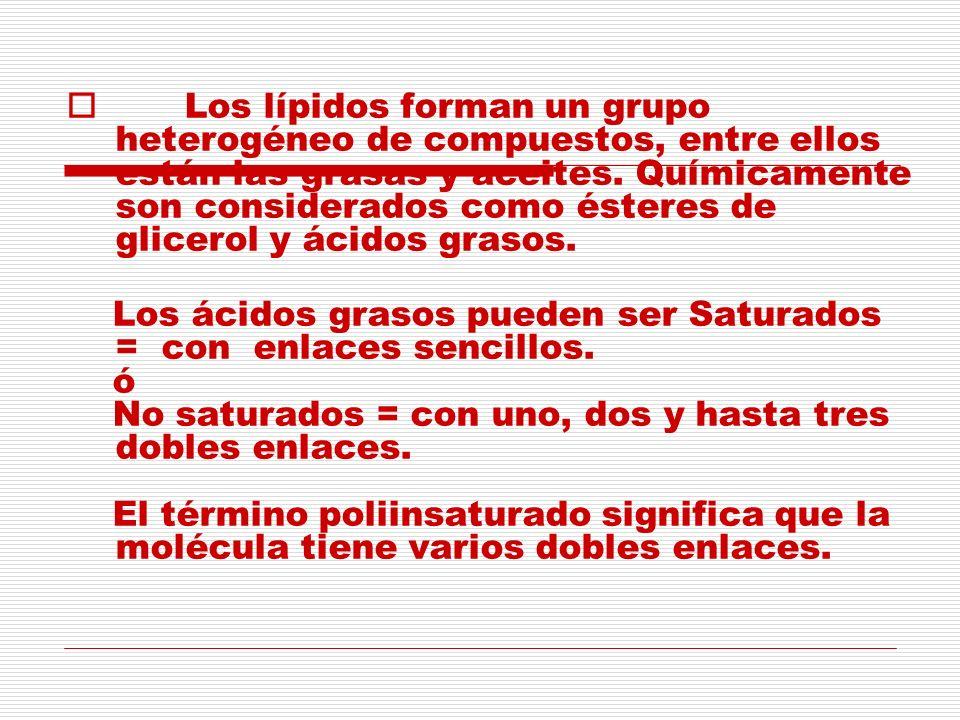 Los lípidos forman un grupo heterogéneo de compuestos, entre ellos están las grasas y aceites. Químicamente son considerados como ésteres de glicerol