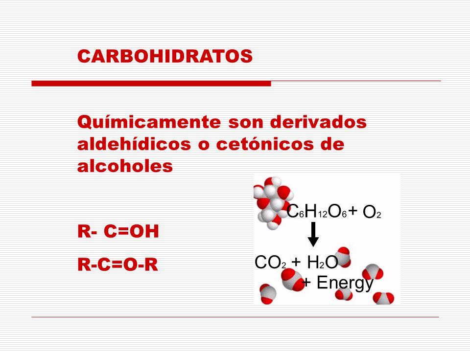 Se clasifican en : Aceites Lípidos simples Grasas Fosfolípidos Lípidos compuestos Glucolípidos Esteroides
