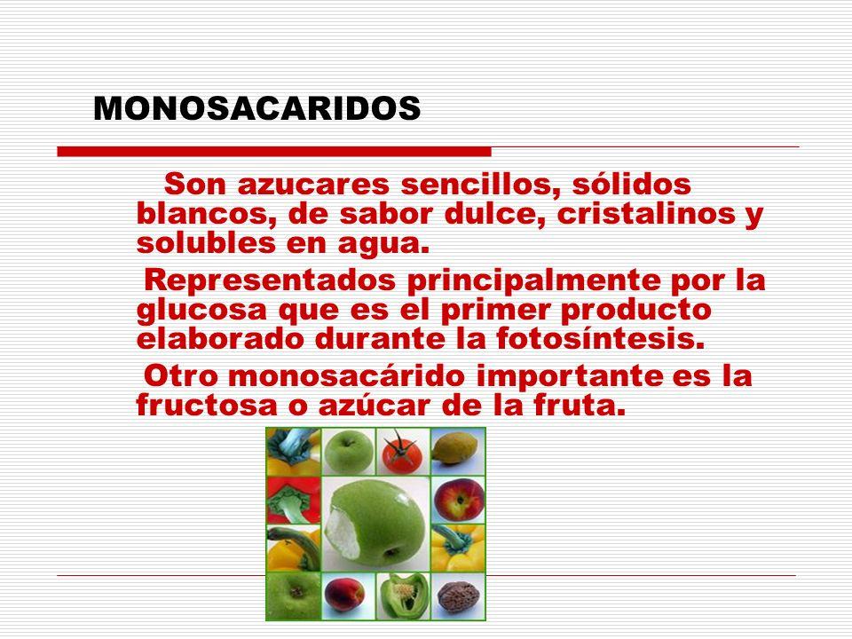 MONOSACARIDOS Son azucares sencillos, sólidos blancos, de sabor dulce, cristalinos y solubles en agua. Representados principalmente por la glucosa que