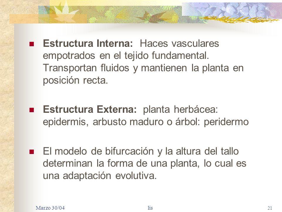 Marzo 30/04 lis 20 TALLOS Principal función: sostener hojas a la luz solar y las flores y semillas en posición favorable para la fertilización y dispe