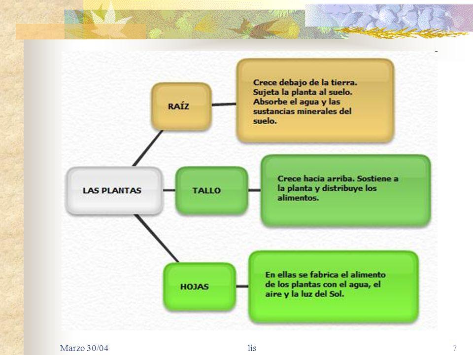 Marzo 30/04 lis 6 TIPOS BÁSICOS DE CÉLULAS Parénquima: células esféricas, con pared primaria flexible. Realizan la fotosíntesis y almacenan agua, almi
