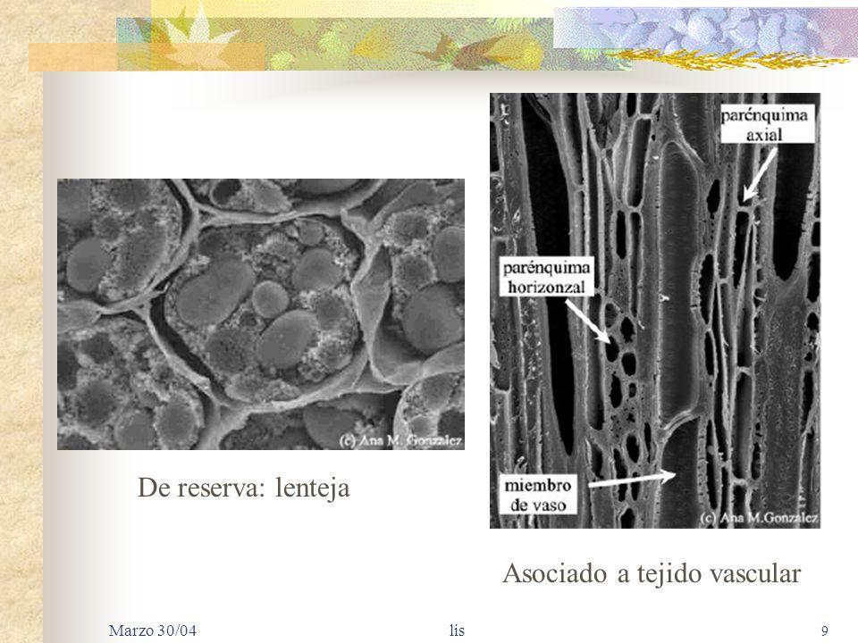 Marzo 30/04 lis 9 De reserva: lenteja Asociado a tejido vascular