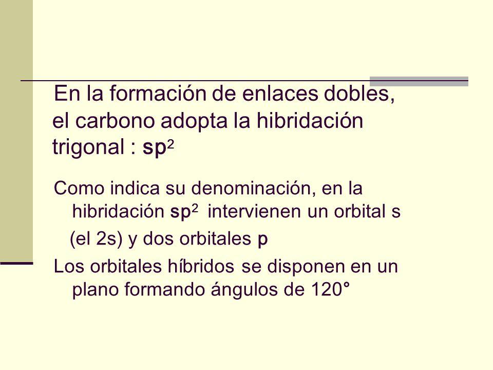 En la formación de enlaces dobles, el carbono adopta la hibridación trigonal : sp 2 Como indica su denominación, en la hibridación sp 2 intervienen un