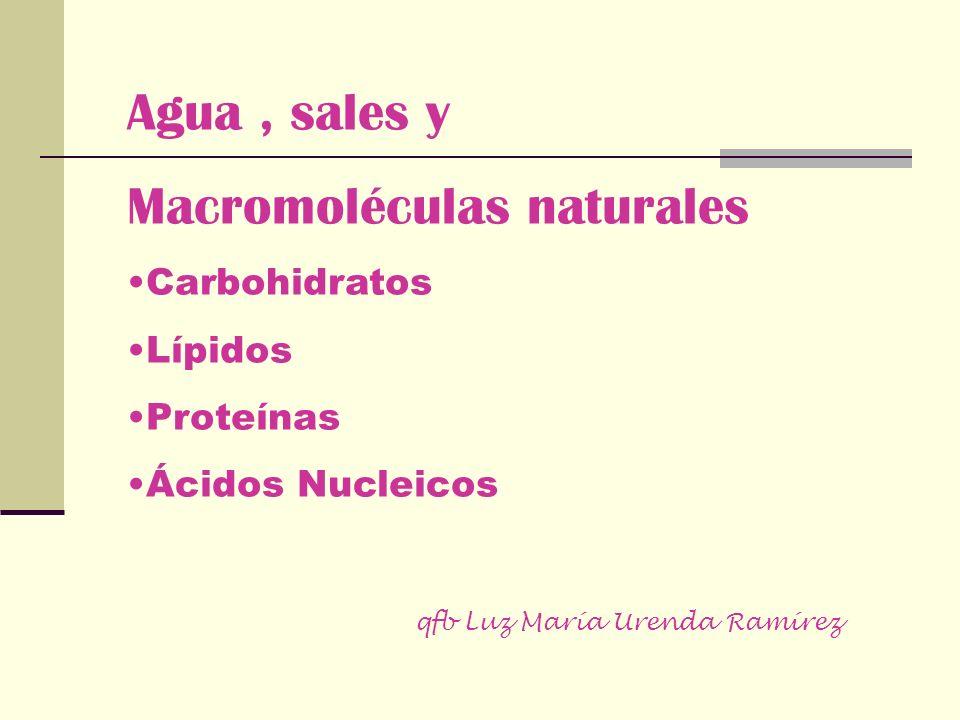 Agua, sales y Macromoléculas naturales Carbohidratos Lípidos Proteínas Ácidos Nucleicos qfb Luz María Urenda Ramírez