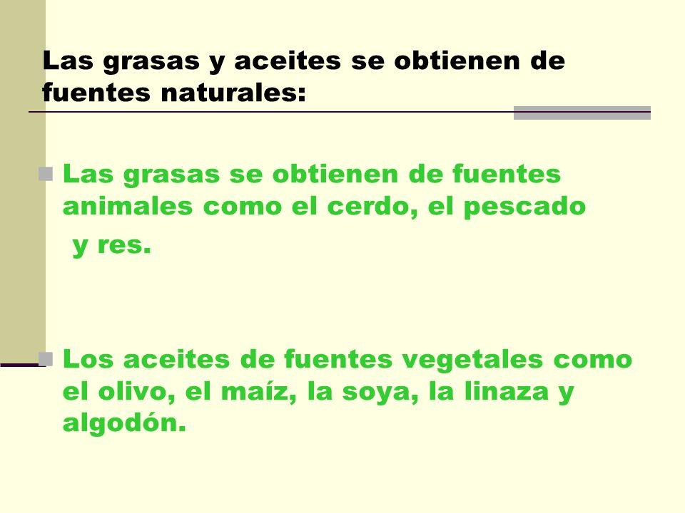 Catalizadores: Favorecen las reacciones químicas que se producen en los seres vivos. Transporte: El transporte de lípidos desde el intestino hasta su