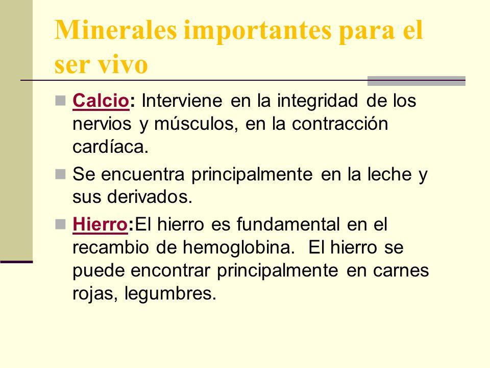 Minerales importantes para el ser vivo Calcio: Interviene en la integridad de los nervios y músculos, en la contracción cardíaca.