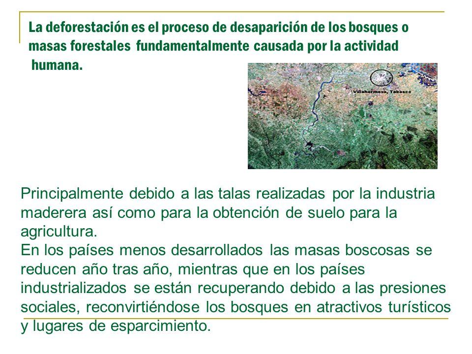 La deforestación es el proceso de desaparición de los bosques o masas forestales fundamentalmente causada por la actividad humana.