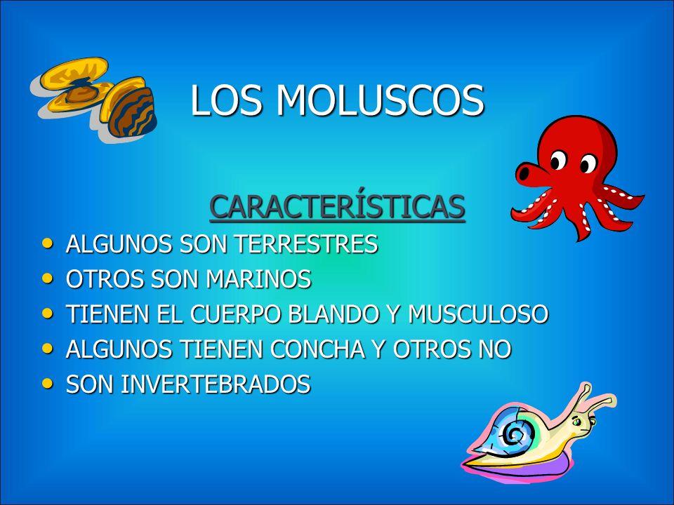 LOS ARTRÓPODOS CARACTERÍSTICAS POSEEN PATAS ARTICULADAS POSEEN PATAS ARTICULADAS CUERPO DIVIDIDO EN PARTES CUERPO DIVIDIDO EN PARTES PIEL ENDURECIDA (