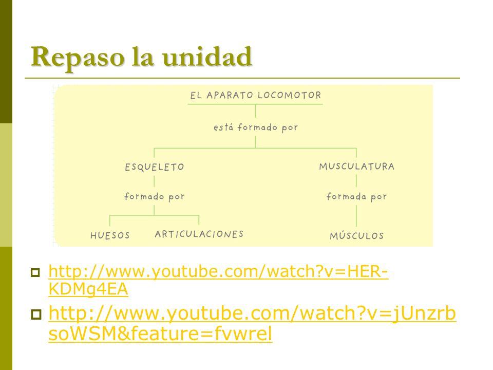 Repaso la unidad http://www.youtube.com/watch?v=HER- KDMg4EA http://www.youtube.com/watch?v=HER- KDMg4EA http://www.youtube.com/watch?v=jUnzrb soWSM&f