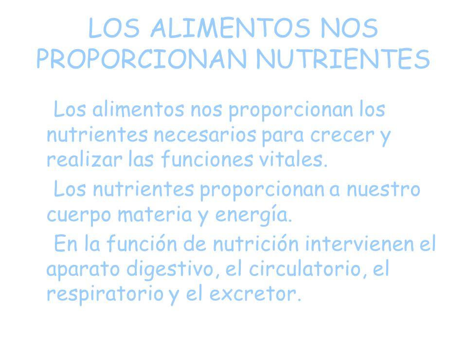 LOS ALIMENTOS NOS PROPORCIONAN NUTRIENTES Los alimentos nos proporcionan los nutrientes necesarios para crecer y realizar las funciones vitales.