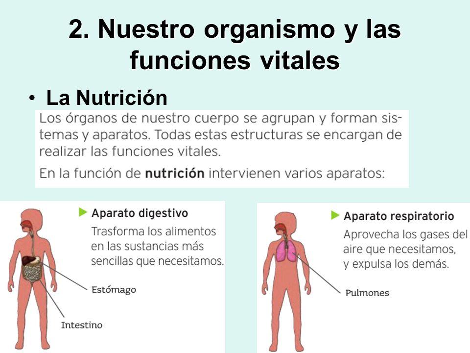 2. Nuestro organismo y las funciones vitales La Nutrición