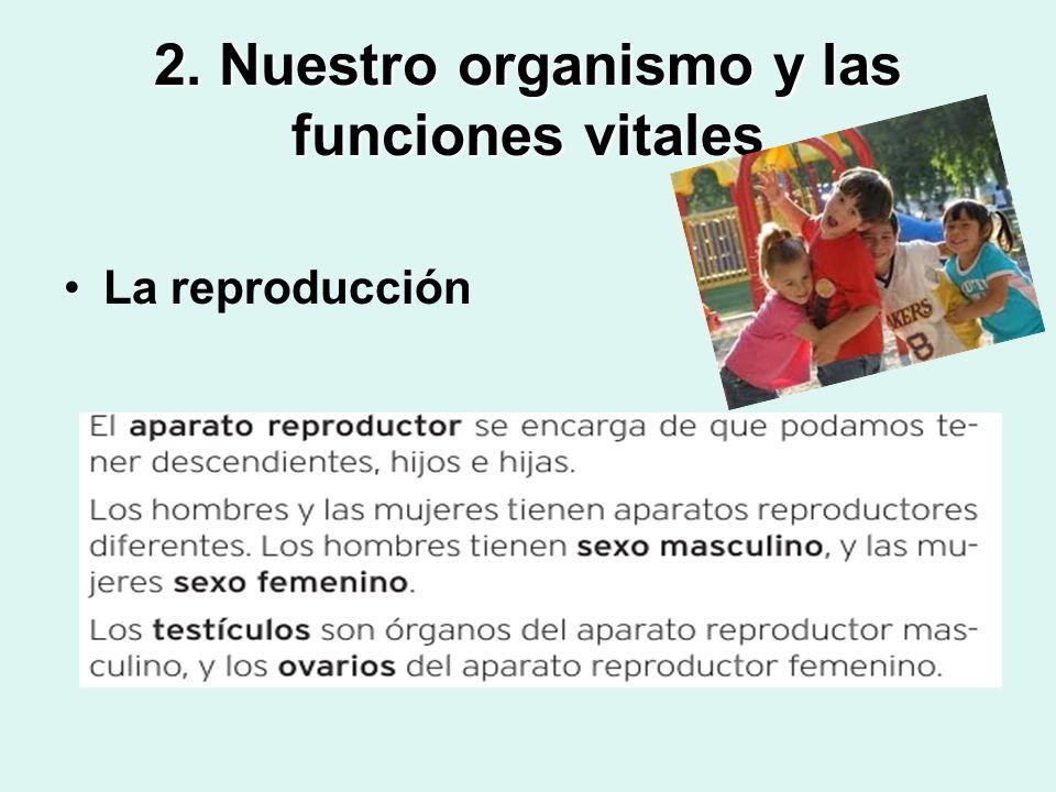 2. Nuestro organismo y las funciones vitales La reproducción