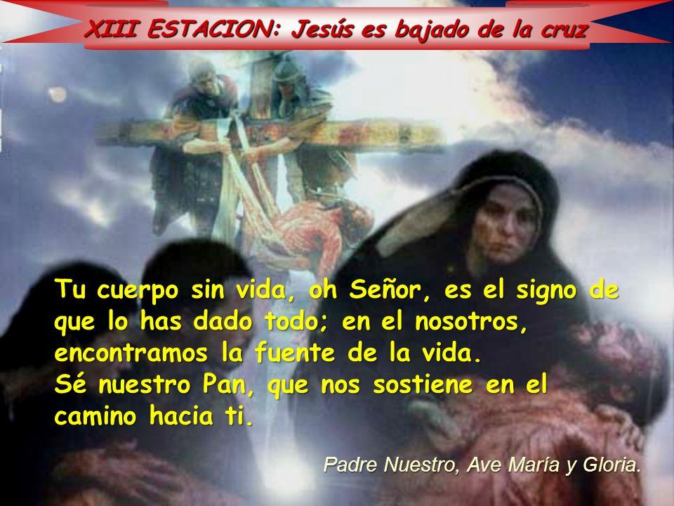 XIII ESTACION: Jesús es bajado de la cruz Tu cuerpo sin vida, oh Señor, es el signo de que lo has dado todo; en el nosotros, encontramos la fuente de