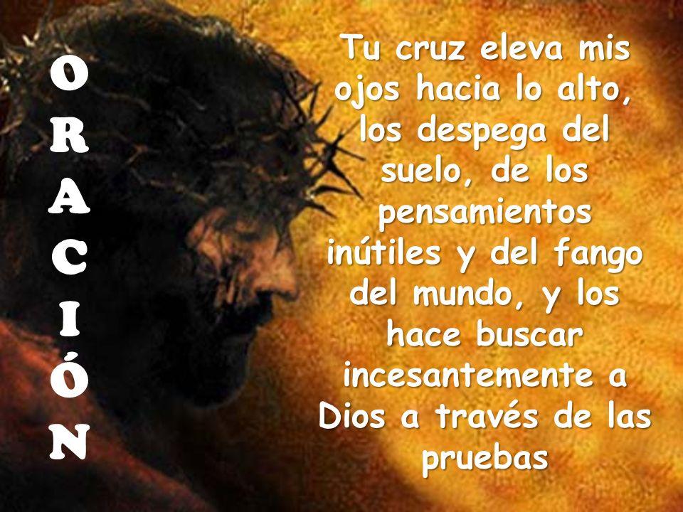 Tu cruz eleva mis ojos hacia lo alto, los despega del suelo, de los pensamientos inútiles y del fango del mundo, y los hace buscar incesantemente a Di