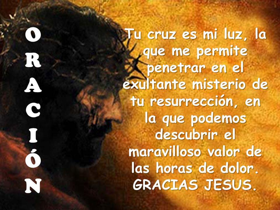 Tu cruz es mi luz, la que me permite penetrar en el exultante misterio de tu resurrección, en la que podemos descubrir el maravilloso valor de las hor