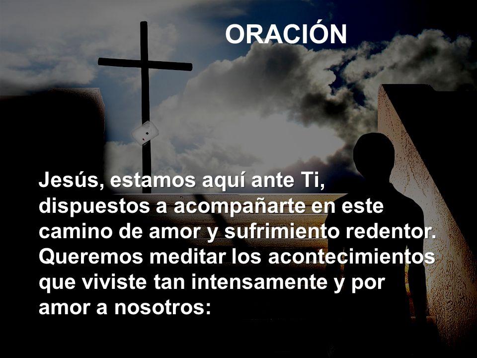 Tu cruz es mi luz, la que me permite penetrar en el exultante misterio de tu resurrección, en la que podemos descubrir el maravilloso valor de las horas de dolor.
