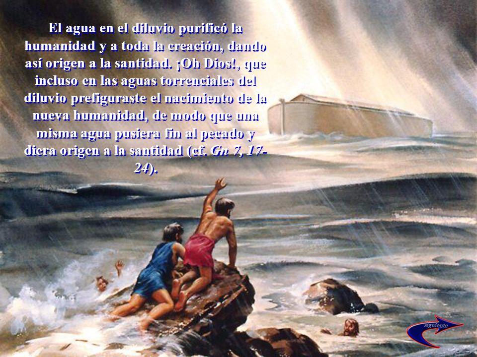 El agua en el diluvio purificó la humanidad y a toda la creación, dando así origen a la santidad. ¡Oh Dios!, que incluso en las aguas torrenciales del